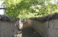 اواهای بومی و ماندگار شهرستان بافت (آبادو،آبادونو)